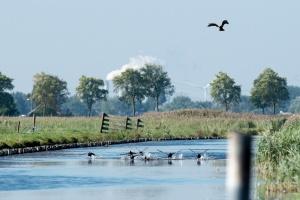 Waterland tele_3715.JPG
