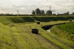 Noordhollandse landschappen_4293.JPG